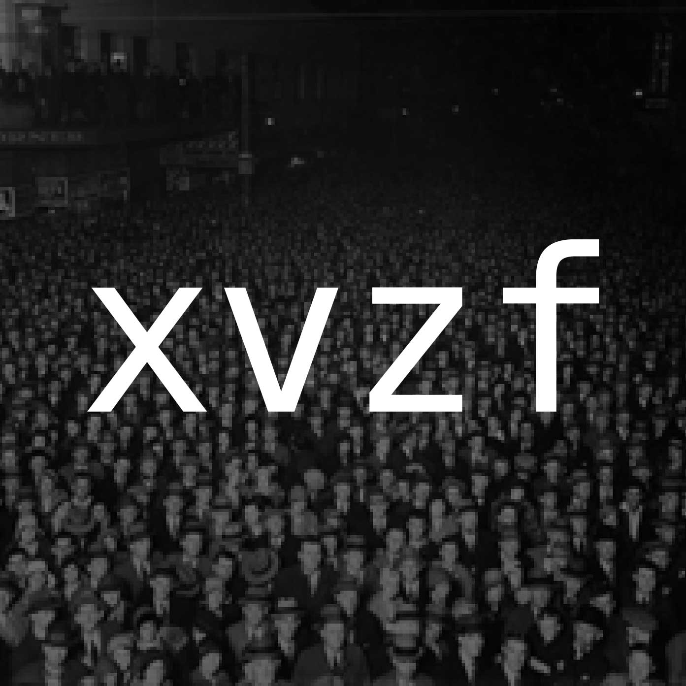 xvzf: true stories from toronto tech workers
